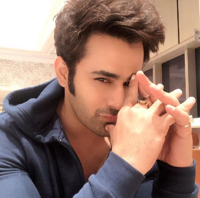 Pearl V Puri joins the league of Shaheer Sheikh and Arjun